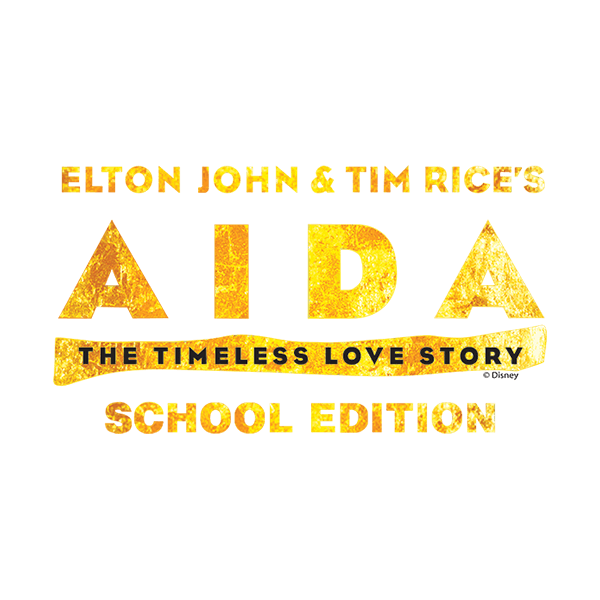 MTI Aida School Edition Logo